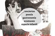 Cartel lunaticos18